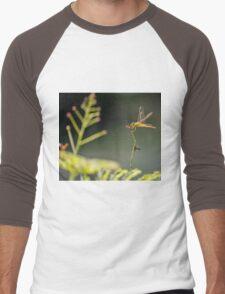 Golden Dragonfly & Friend Men's Baseball ¾ T-Shirt