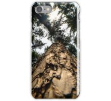 Looking Up at Giants iPhone Case/Skin