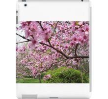 Cherry Branches iPad Case/Skin