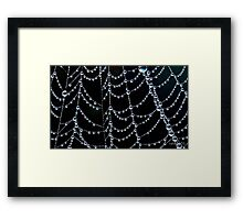 Natures jewellery Framed Print