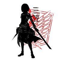 Mikasa Photographic Print
