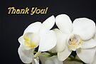 Thank You Card by AuntDot