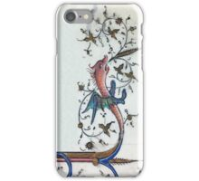 Draco Umbrans iPhone Case/Skin