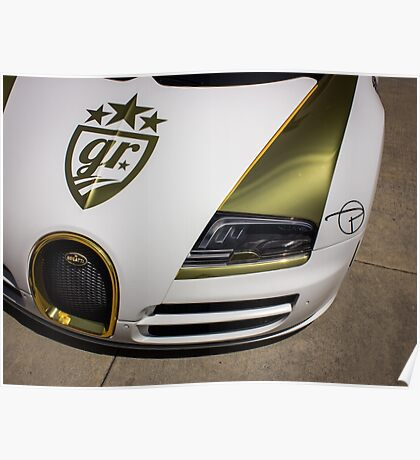 Gold Plated Bug  Poster