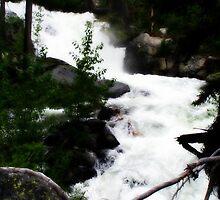 River Running Freely~ by Brandi Burdick