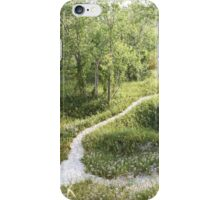 Path Through the Trees iPhone Case/Skin