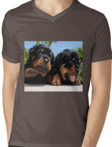 Two Rottweiler Puppies, High Five Mens V-Neck T-Shirt