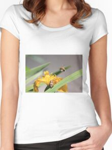 Bumble bee landing on yellow flag iris Women's Fitted Scoop T-Shirt