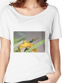 Bumble bee landing on yellow flag iris Women's Relaxed Fit T-Shirt