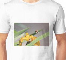 Bumble bee landing on yellow flag iris Unisex T-Shirt