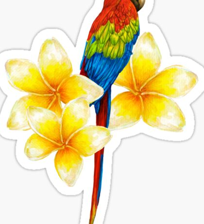 parrot sitting on a branch with tropical flowers Sticker