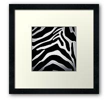 Zebra texture Framed Print