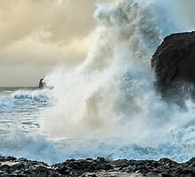 The Height of the Wave by Nick Jenkins
