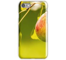 Pear on a branch iPhone Case/Skin