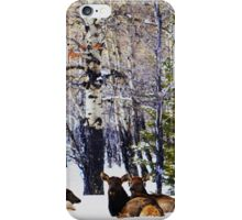 Elk of Canmore iPhone Case/Skin