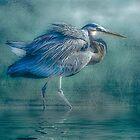 Heron's Pool by Tarrby