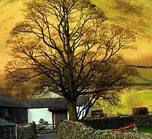 Tree at Wasdale Head by Billlee