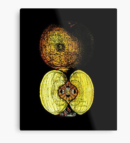 newton's infinite fruit of cosmic indolence Metal Print
