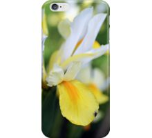 Iris hollandica iPhone Case/Skin