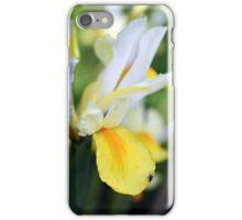Iris hollandica iPhone Case/Skin