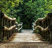 Footbridge Along the Way by SandraNightski