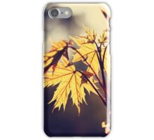 Acer platanoides (Norway maple) iPhone Case/Skin