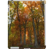 Beautiful autumn colors in the forest iPad Case/Skin