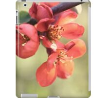 Chaenomeles japonica iPad Case/Skin