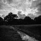Crazy Sky Over a Dark Landscape by Lisa Cook