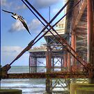 Fly By Pier by JohnYoung