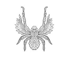 Angel Spider - Complicated Spiders - Black line Photographic Print