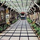 Biltmore garden by ANNABEL   S. ALENTON