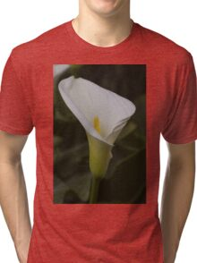 lily blooming in the garden Tri-blend T-Shirt