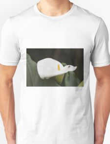 lily blooming in the garden T-Shirt