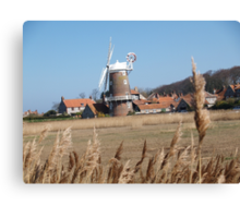 Cley Windmill from the reeds Canvas Print