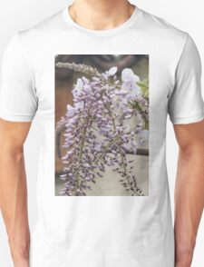 white wisteria in spring Unisex T-Shirt