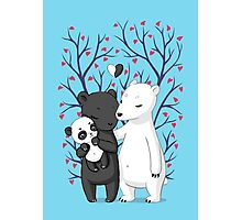 Bear Family Photographic Print