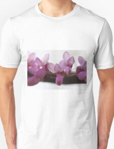 pink wisteria in spring T-Shirt
