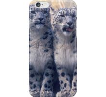 Twin young Snow Leopards iPhone Case/Skin
