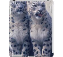 Twin young Snow Leopards iPad Case/Skin