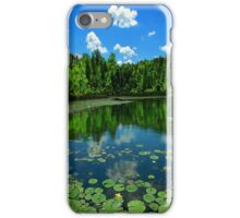 The arrow flies when you dream, the hours tick away..In the fullness of time, a garden to nurture and protect..it's the measure of life iPhone Case/Skin
