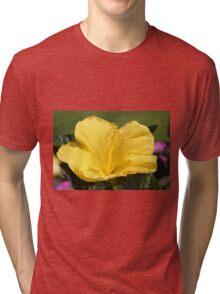 Upright Beauty Tri-blend T-Shirt