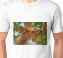 Atlas Beauty Unisex T-Shirt