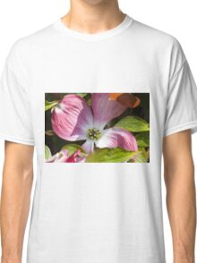 blooming magnolia flowers in spring Classic T-Shirt