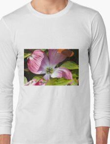 blooming magnolia flowers in spring Long Sleeve T-Shirt