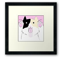 Calico licking your screen Framed Print