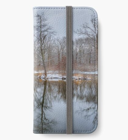 Early Spring in New England iPhone Wallet/Case/Skin