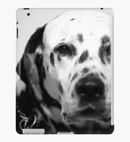 Pixel iPad Case/Skin