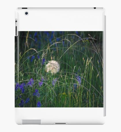 flowers and flowers and grass iPad Case/Skin