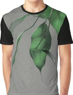 Ficus Sumi-e Graphic T-Shirt